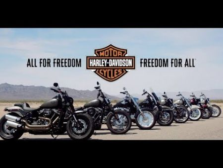 SOFTAIL® AT YOUR SERVICE | TUSKER HARLEY-DAVIDSON