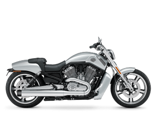 V-Rod Muscle<sup>®</sup> - 2009 Motorcycles