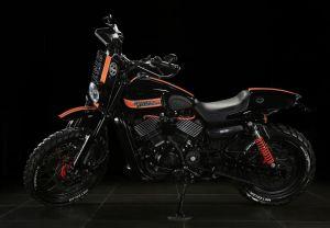 ENDU-ROD | Tusker Harley-Davidson