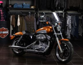 2014 Sportster XL883 Super Low