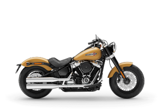 Softail Slim<sup>®</sup> - 2019年モデル