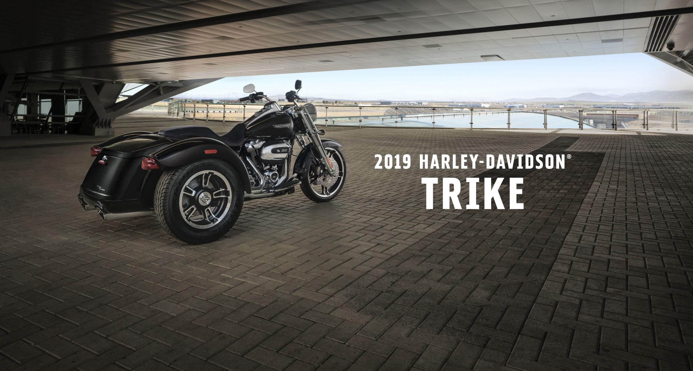 Trike - 2019年モデル