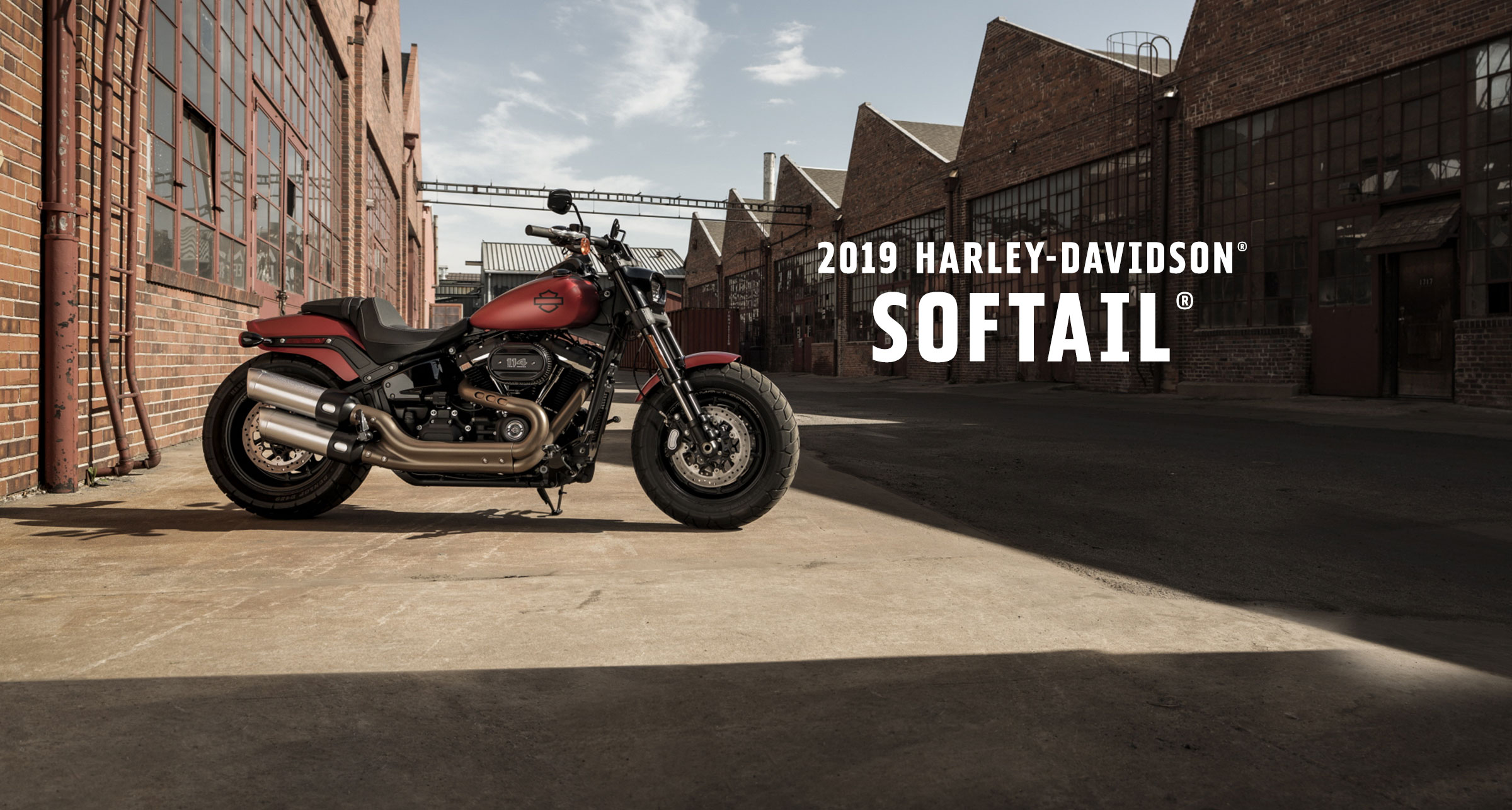 Softail<sup>®</sup> - 2019 Motorcycles