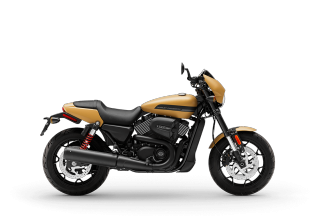Street Rod<sup>™</sup> - Motocicletas 2019