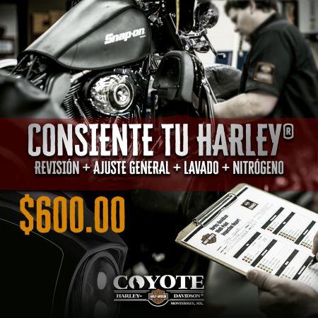 CONSIENTE TU HARLEY®