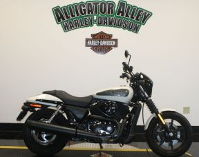 XG500 2019 Harley-Davidson Street<sup>®</sup> 500