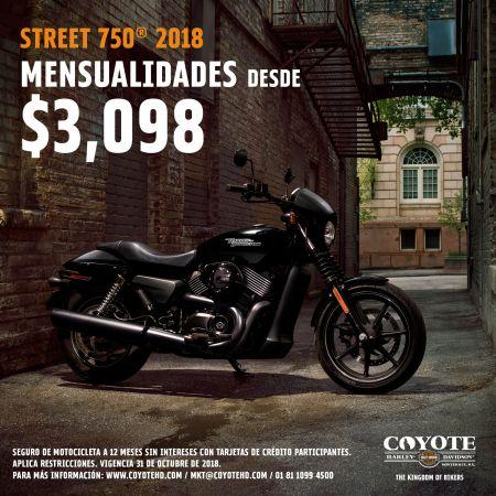 H-D®  Street® 750