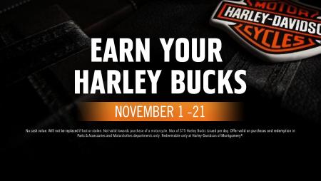 Harley Bucks