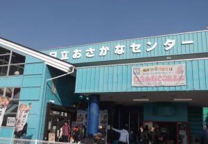 2019/1/20 日立おさかなセンター