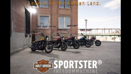 2019 Sportster Series