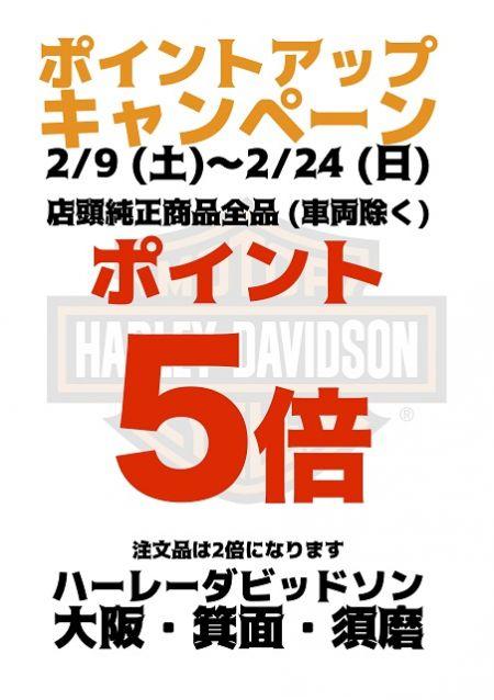 2/4(土)~2/24(日)ポイントアップキャンペ-ン最大5倍