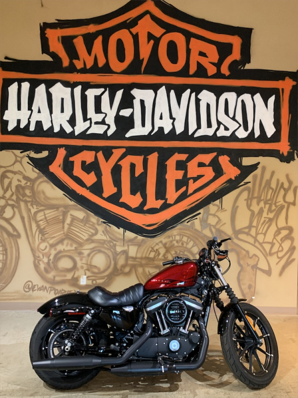 2017 HD XL883N - Sportster Iron 883™