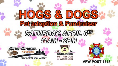 HOGS & DOGS: Pet Adoption & Fundraiser