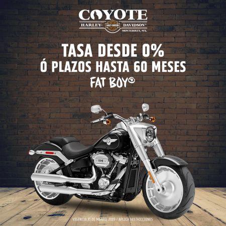 Promoción motocicleta Fat Boy® 2019