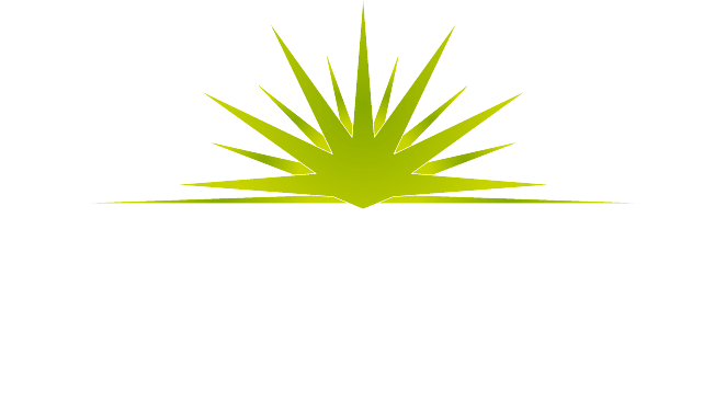 Tequila Harley-Davidson<sup>®</sup>