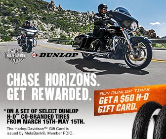 Dunlop Tires Spring