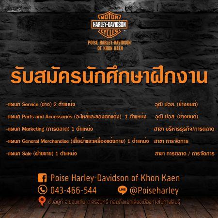 Poise Harley-Davidson Of Khon Kaen รับสมัครนักศึกษาฝึกงาน