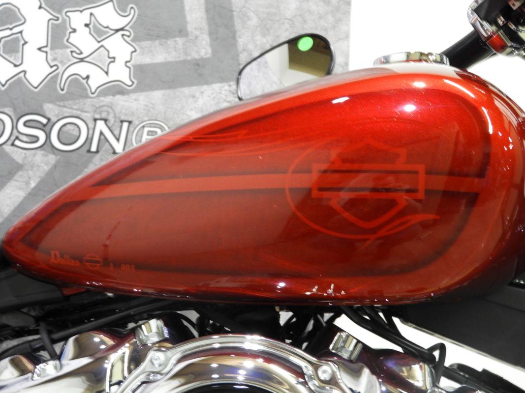 2019 Harley-Davidson® Softail Breakout®
