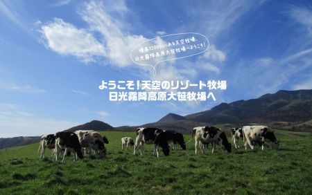 4/21 (日) HOGファンライドラリー ~大笹牧場~ x The Rikuyu-Man Ride