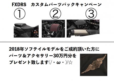 FLDRSと2018年ソフテイルモデルキャンペーン