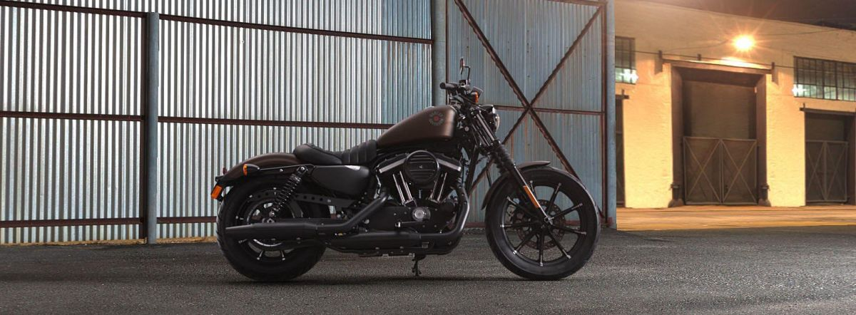 2019 HARLEY DAVIDSON XL 883N - Sportster Iron 883™
