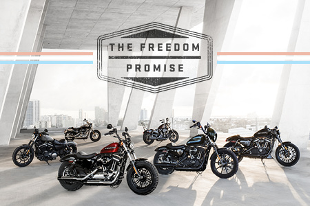 The Freedom Promise