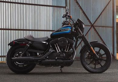 2019 Sportster Iron 1200™ - XL1200NS