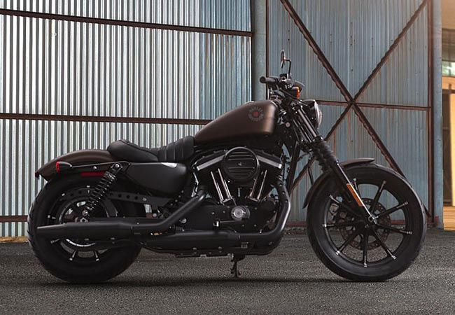 2019 Sportster Iron 883™ - XL883N
