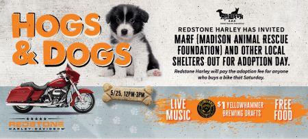 HOG's & Dogs Adoption Event