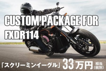 CUSTOM PACKAGE FOR FXDR114