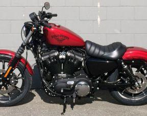 2019 Harley-Davidson XL883N - Sportster Iron 883