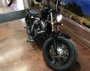 2013 HD Sportster XL 1200 Forty-Eight