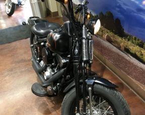2008 HD SOFTAIL CROSSBONES