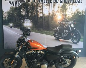 Harley Davidson Sportster  Forty-Eight 2019 CUSTOM PAINT