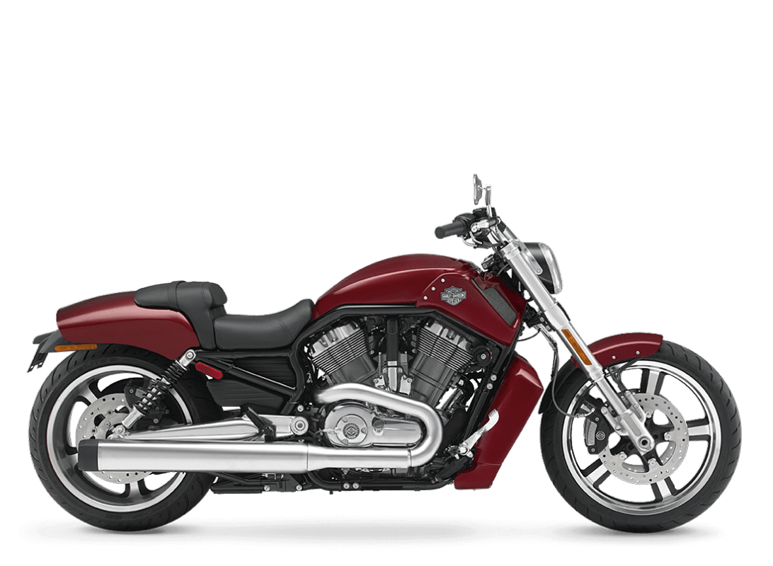 2010 HD V-Rod Muscle