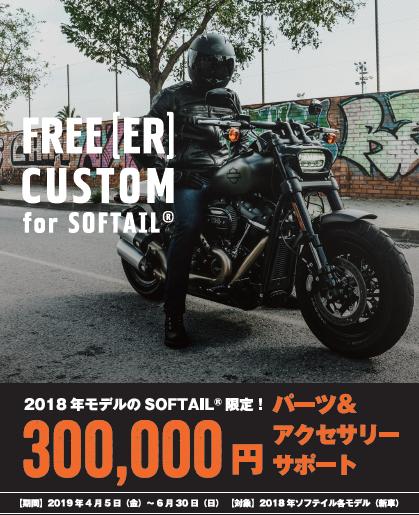 2018YM SOFTAIL 30万円 P&Aサポート