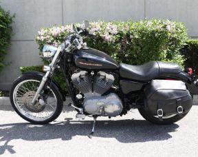 2004 Sportster 883 Custom