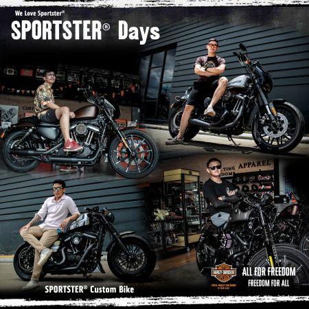 Sportster Custom