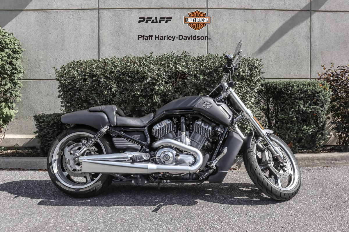 2009 V-Rod Muscle
