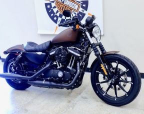 2019 Iron 883 in Rawhide Denim