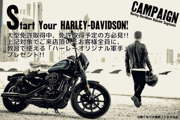 Start Your Harley-davidson キャンペーン!!