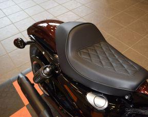 2019 Harley-Davidson Sportster Iron 1200 XL1200NS