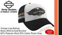 Vintage Logo Ballcap