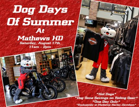 Dog Days Of Summer at Mathews HD