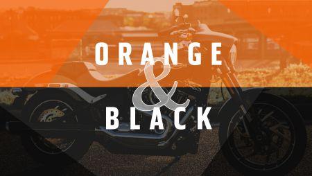 ORANGE&BLACKフェアです♪