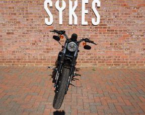 2016 Harley-Davidson XL883N Sportster Iron 883, in Olive Gold