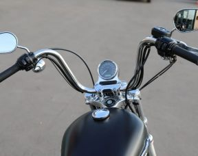 2013 1200 Custom
