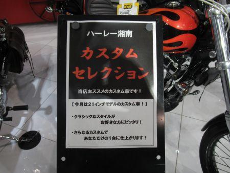 ハーレーダビッドソン湘南オススメカスタム車両!!