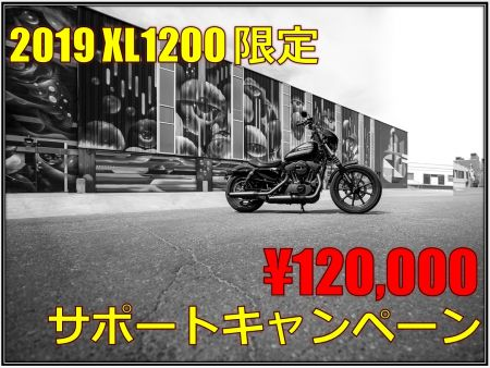 2019 XL1200シリーズ 購入サポートキャンペーン!