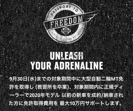 PASSPORT TO FREEDOM開催!!大型免許取得をサポート!!